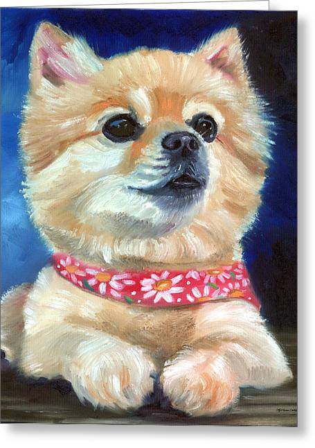 Pomeranian Greeting Cards - The Daisy Scarf Greeting Card by Lyn Cook