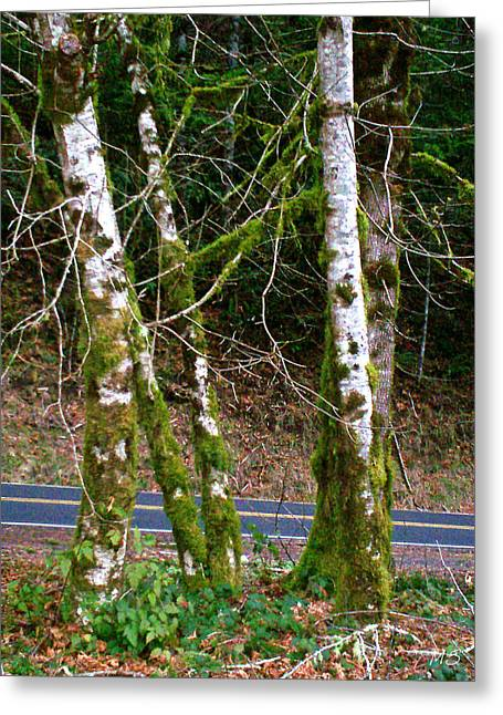 """""""strange Trees"""" Greeting Cards - The Dancing Moss Trees Greeting Card by Absinthe Art By Michelle LeAnn Scott"""