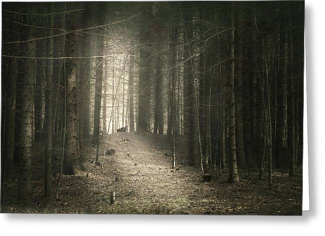 Foggy Day Greeting Cards - The dark side Greeting Card by Toma Bonciu