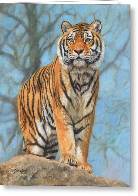 Siberian Greeting Cards - The Dartmoor Tiger Greeting Card by David Stribbling