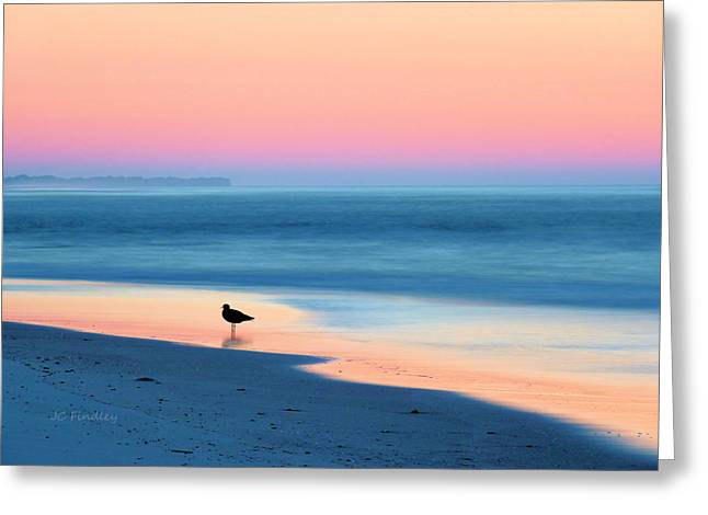 Sand And Sea Greeting Cards - The Day Begins Greeting Card by JC Findley