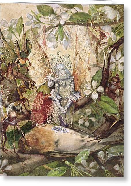 Fairies Drawings Greeting Cards - The Death Of Cock Robin Greeting Card by John Anster Fitzgerald