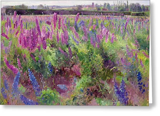Rural Greeting Cards - The Delphinium Field, 1991 Greeting Card by Timothy Easton