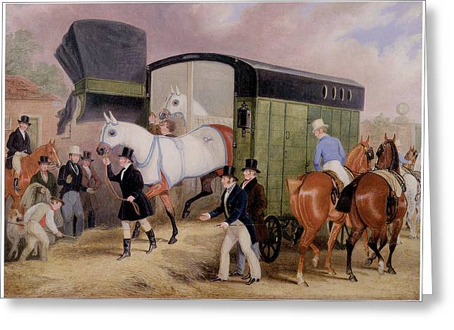 Race Horse Greeting Cards - The Derby Pets Greeting Card by James Pollard