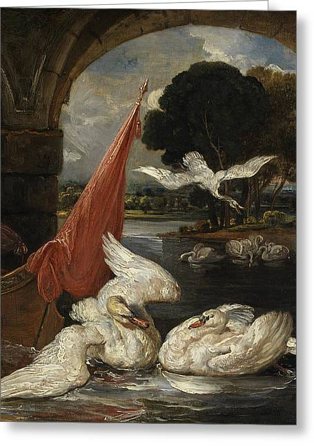Swans... Greeting Cards - The Descent Of The Swan, Illustration Greeting Card by James Ward