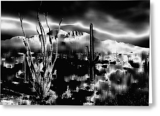 D.w. Digital Art Greeting Cards - The Desert in Black and White Greeting Card by Barbara D Richards