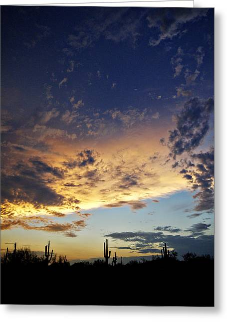 Monsoon Clouds Greeting Cards - The Desert Sky II  Greeting Card by Saija  Lehtonen