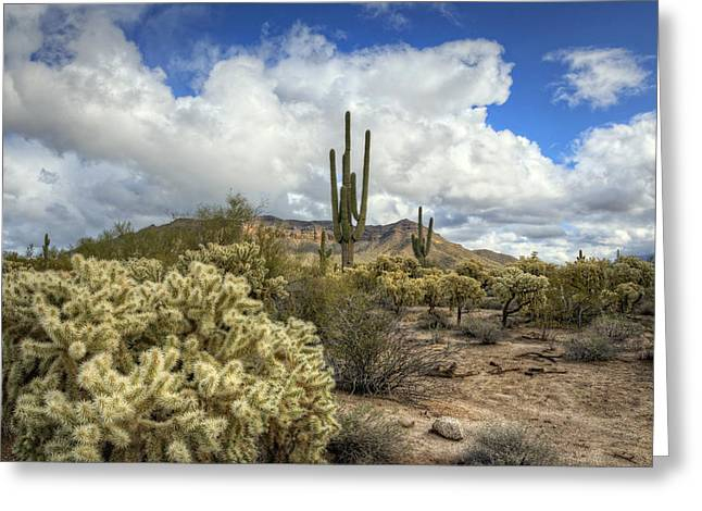 Monsoon Clouds Greeting Cards - The Desert Southwest Greeting Card by Saija  Lehtonen