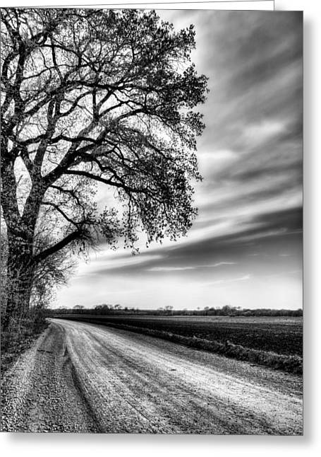 Gravel Road Photographs Greeting Cards - The Dirt Road in Black and White Greeting Card by JC Findley