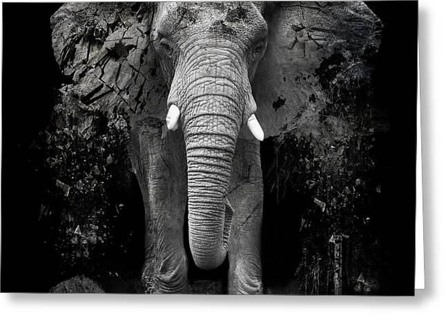 Ivory Greeting Cards - The Disappearance of the Elephant Greeting Card by Erik Brede