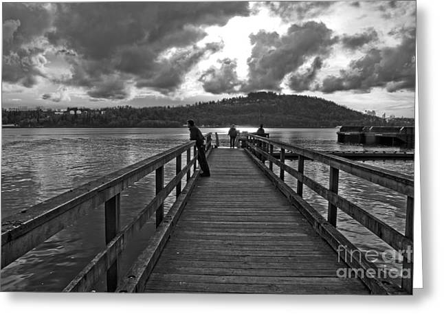 B.c. Greeting Cards - The Dock of the Bay Greeting Card by Nancy Harrison