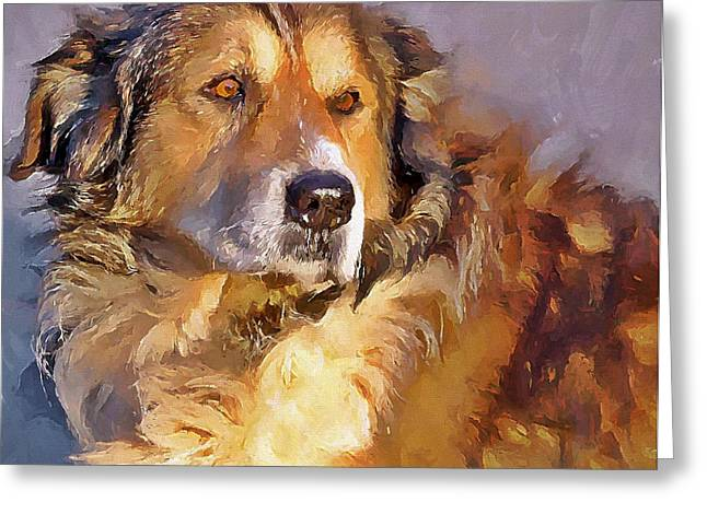 House Pet Greeting Cards - The Dog Friend Greeting Card by Yury Malkov