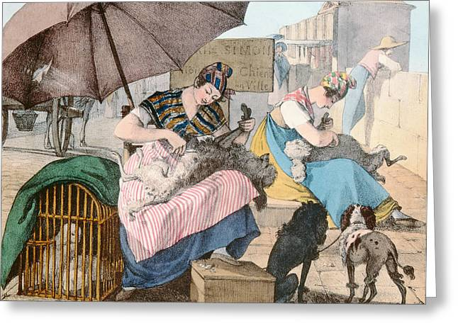 Trimmings Greeting Cards - The Dog Groomers, 1820 Colour Litho Greeting Card by John James Chalon