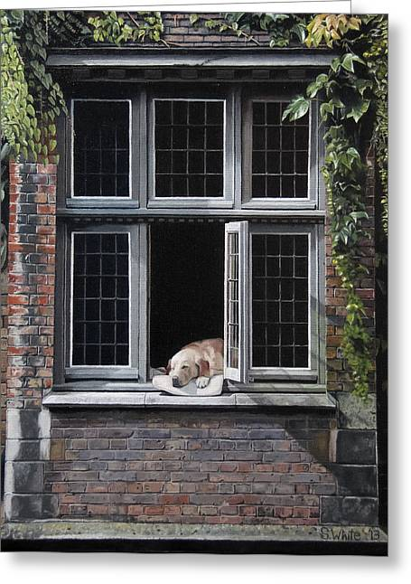 Bruges Greeting Cards - The Dog of Bruges Greeting Card by Scot White