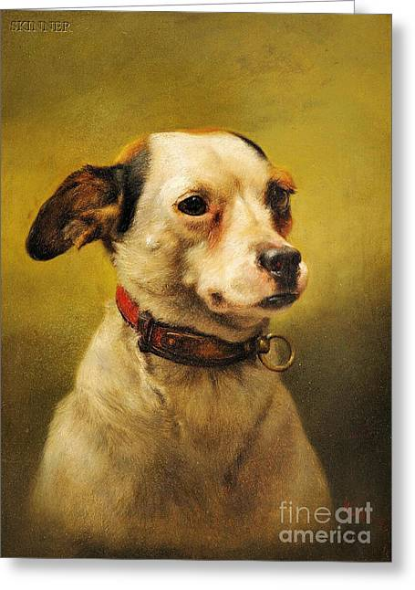 Action Sports Portrait Greeting Cards - The Dog Greeting Card by William Weekes