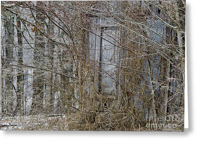 The Door To The Past Greeting Card by Wilma  Birdwell