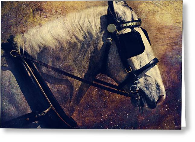 Shadow Horse Studios Greeting Cards - The Draft Greeting Card by Lyndsey Warren