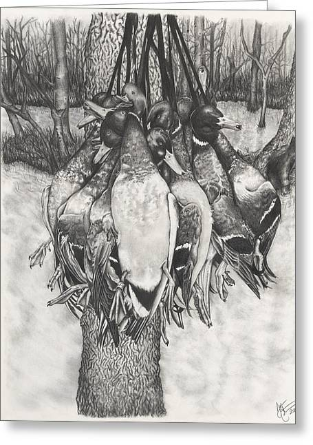 Mallard Drawings Greeting Cards - The Duck Hunt Greeting Card by Jon Cotroneo