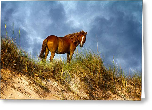 Turbulent Skies Photographs Greeting Cards - The Dune King Greeting Card by Betsy C  Knapp