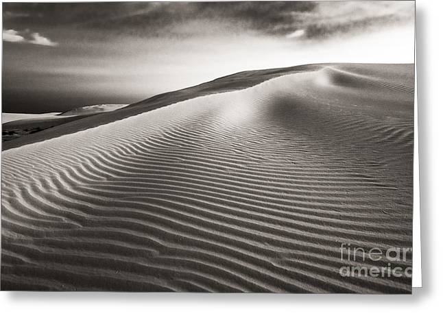Sherry Davis Greeting Cards - The Dune Greeting Card by Sherry Davis