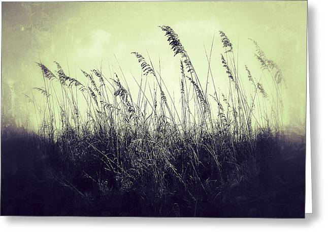 Ocean Theme Greeting Cards - The Dunes Greeting Card by Brandon Addis