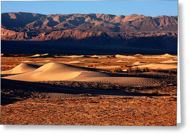 The Dunes Of Death Valley Greeting Card by David Toussaint