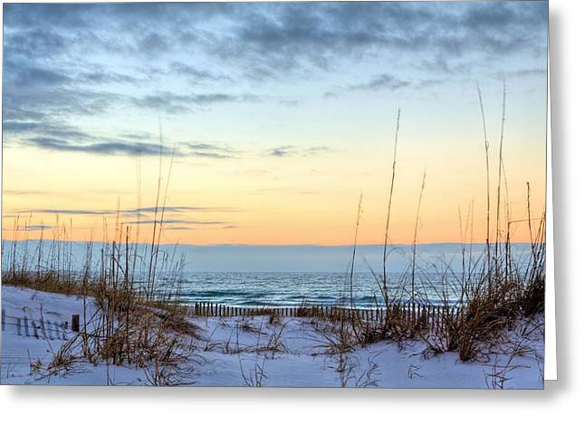 Emerald Coast Greeting Cards - The Dunes of PC Beach Greeting Card by JC Findley