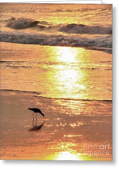 Ocean. Reflection Greeting Cards - The Early Bird Greeting Card by Todd A Blanchard