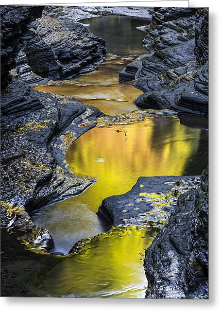 Finger Lakes Trail.cavern Cascade Greeting Cards - The Early Morning Color Of Watkins Glen State Park Greeting Card by Jim Vallee