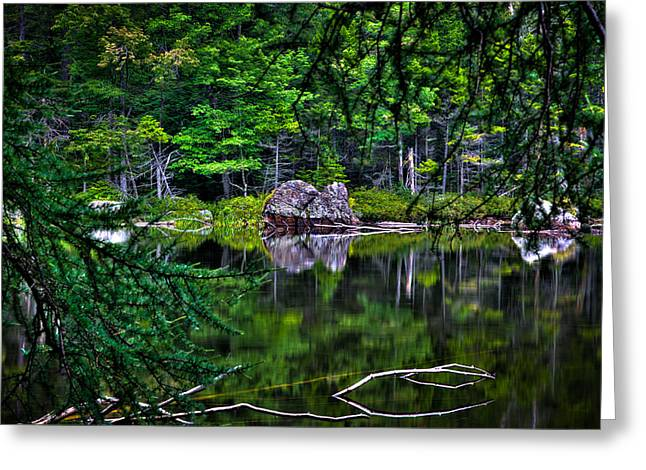 Lush Green Greeting Cards - The East Shore of Sis Lake Greeting Card by David Patterson