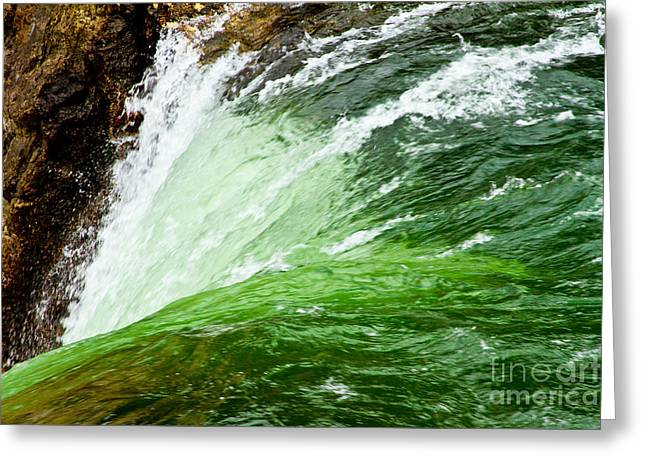 Yellowstone River Greeting Cards - The Edge Greeting Card by Bill Gallagher