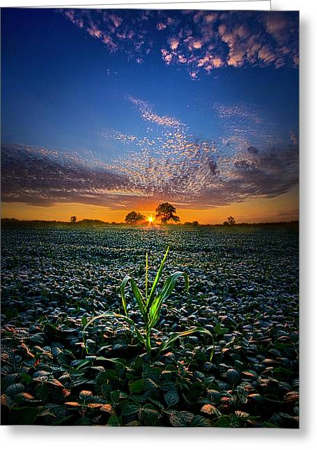 Geographic Greeting Cards - The Edge of Dreams Greeting Card by Phil Koch
