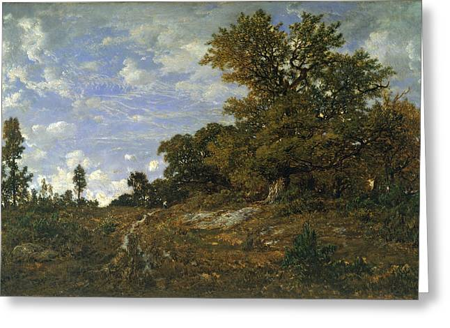 Fontainebleau Forest Greeting Cards - The Edge of the Woods at Monts-Girard. Fontainebleau Forest Greeting Card by Theodore Rousseau