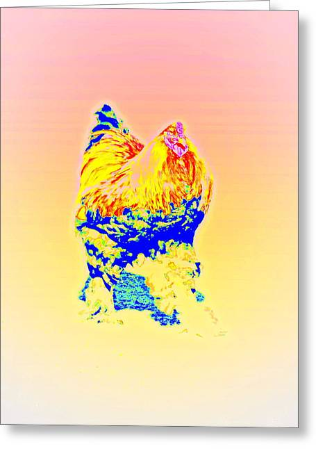 Sun Breakthrough Greeting Cards - The Egg Warmer Greeting Card by Hilde Widerberg