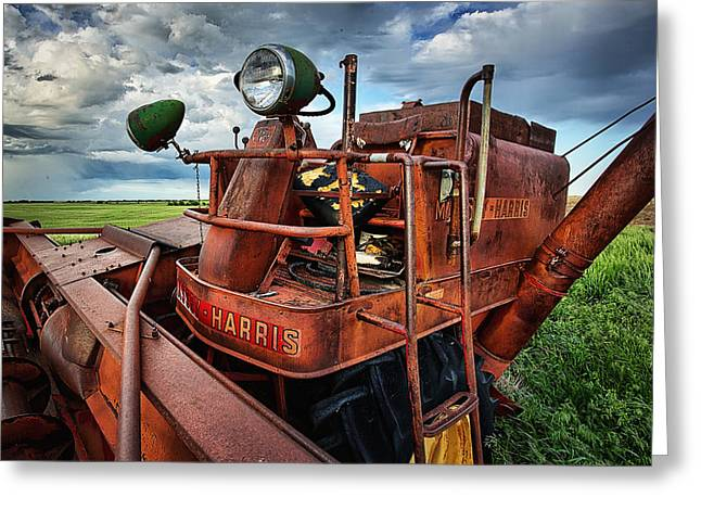 Farming Greeting Cards - The Elder Greeting Card by Thomas Zimmerman