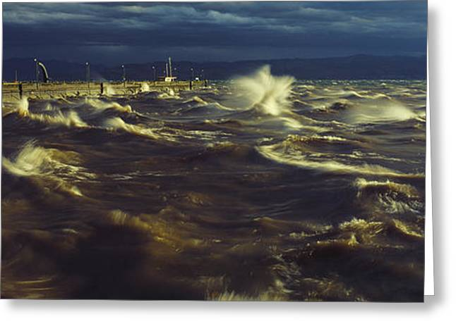 Ferocity Greeting Cards - The elements Greeting Card by Holger Spiering