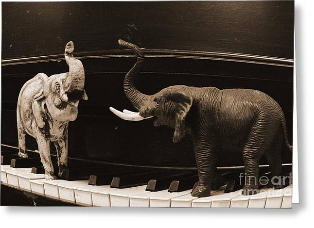 Jim Cook Greeting Cards - The Elephant Walk Greeting Card by Jim Cook