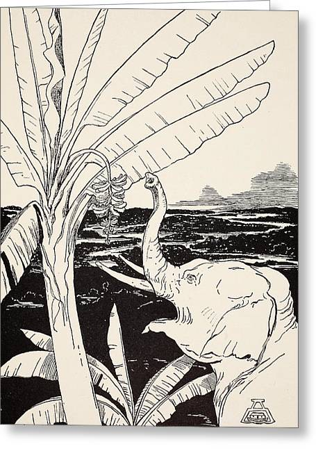Pen And Ink Drawing Greeting Cards - The Elephants Child going to pull bananas off a banana-tree Greeting Card by Joseph Rudyard Kipling