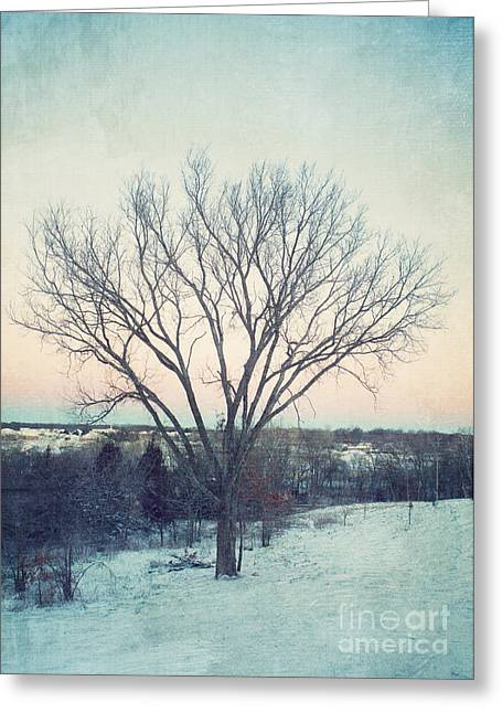 Trees In Winter Greeting Cards - The Elm in Winter Greeting Card by Kay Pickens