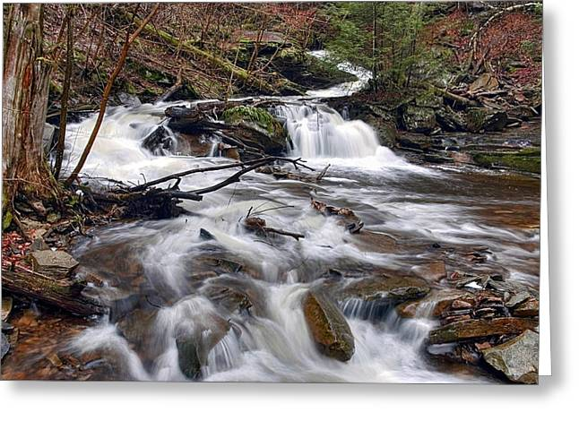 Conestoga Greeting Cards - Elusive Conestoga Waterfall in Spring Greeting Card by Gene Walls