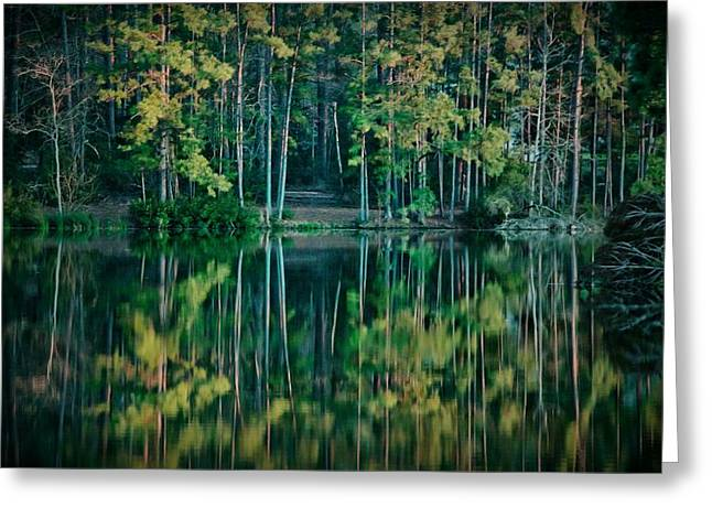 Glasses Reflecting Digital Greeting Cards - The Emerald Forest Greeting Card by Linda Unger