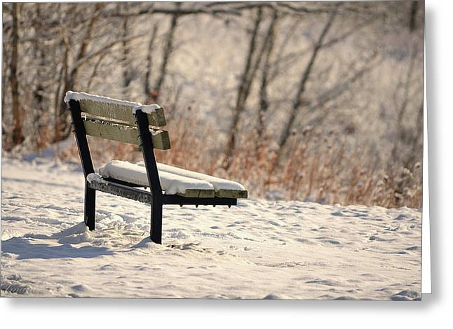 Empty Chairs Digital Greeting Cards - The Empty Bench Greeting Card by Maria Angelica Maira