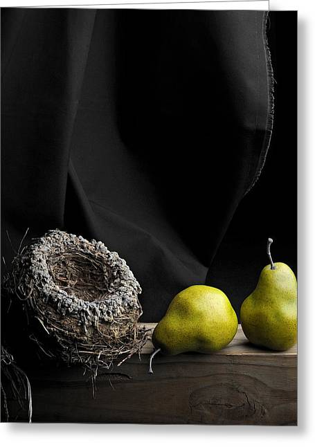 Krasimir Tolev Photography Greeting Cards - The Empty Nest Greeting Card by Krasimir Tolev
