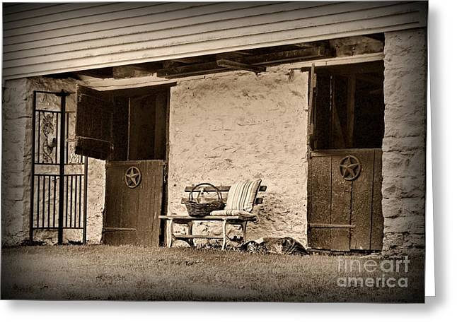 Quite Photographs Greeting Cards - The Empty Stable Greeting Card by Paul Ward