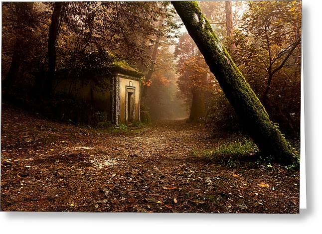 Mood Greeting Cards - The enchanted trail Greeting Card by Jorge Maia