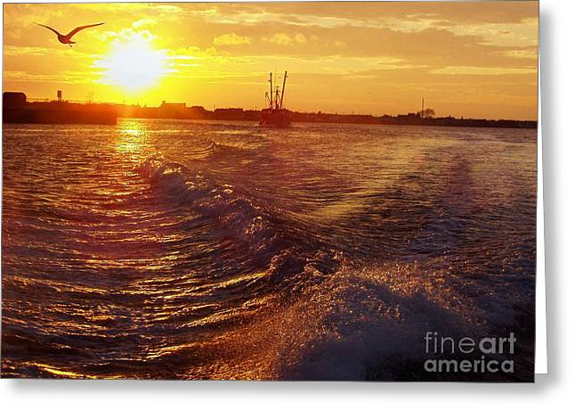 Ocean Art Photography Greeting Cards - The End to a Fishing Day Greeting Card by John Telfer