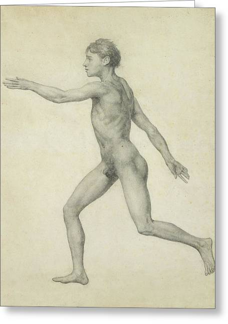 Anatomy Drawings Greeting Cards - The Entire Human Figure from the Left lateral view Greeting Card by George Stubbs