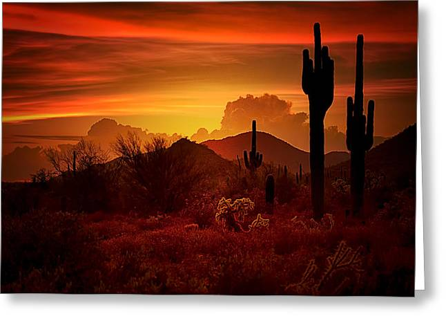 Saguaro Cactus Greeting Cards - The Essence of the Southwest Greeting Card by Saija  Lehtonen