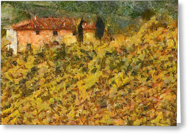 Chianti Hills Greeting Cards - The Evening Before Grape Harvest Greeting Card by Dragica  Micki Fortuna