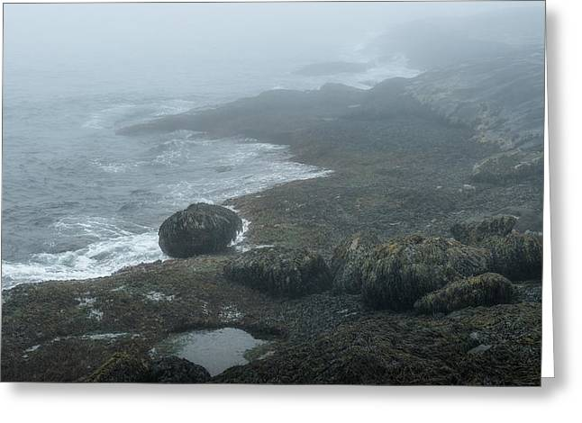 Maine Seascapes Greeting Cards - The Evolution of Rocks Greeting Card by Joseph Smith